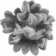 Flowers No.20- Template 6