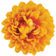 Flowers No.20- 2