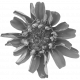 Flowers No. 25-03 Template