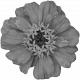 Flowers No. 25-06 Template
