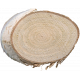 Wood Slices 12