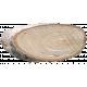 Wood Slices 16