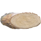 Wood Slices 18