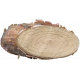 Wood Slices 20