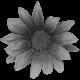 Flowers No.26 – Flower 04 Template