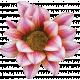 Flowers No.26 – Flower 03
