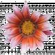 Flowers No.26 – Flower 04