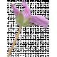 Flowers No.29-03