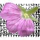 Flowers No.29-14