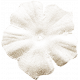 Be Bold Elements- White Fabric Flower
