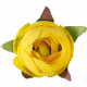 Flowers No. 1- Flower 3