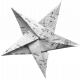 Folded Stars Templates- Star 1