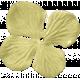 KMRD-Fish Tails-flower06