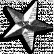 KMRD-Patriotic-star-silver