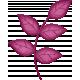 brishti_leaves 3