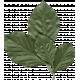 ErodedHues_leaves