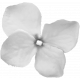 Fabric Flower Template 062