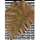 Yesteryear- Brown Leaf