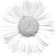 Flower Template 008