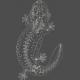 Chills & Thrills - Lizard Chalk Skeleton Stamp 3