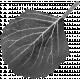 Leaf Template 110