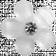 Button Template 383