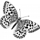 Butterfly Template 072