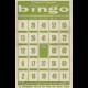 Slice of Summer- Bingo Card