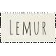At the Zoo- Lemur Word Art