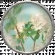 Apple Crisp- Apple Blossom Brad 03