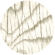 Apple Crisp- Wood Brad Disk 02