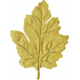 Day of Thanks- Yellow Leaf 01