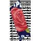 Apple Crisp- Rose Washi Tape