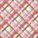 Day of Thanks- Plaid Paper