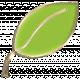 Apple Crisp- Enamel Leaf Charm 01