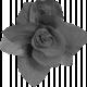 Paper Flower Template 06