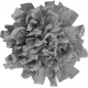 Paper Flower Template 009
