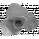 Paper Flower Template 010
