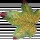 Fall Into Autumn- Silk Leaf 2