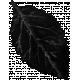 Chills & Thrills Black Leaf 01