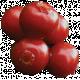 Woodland Winter- Berries