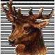Woodland Winter- Deer Ephemera