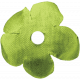 Look, A Book!- Green Flower