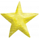 Look, A Book!- Yellow Star