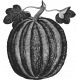 Pumpkin Template 004