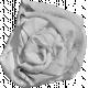 Fabric Flower Template 054