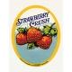 Strawberry Fields- Journal Card 19