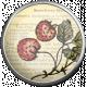 Strawberry Fields- Strawberry Brad