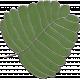 Strawberry Fields- Leaf Doodle 01
