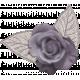 Moon Dreams- Mini Kit- Rose